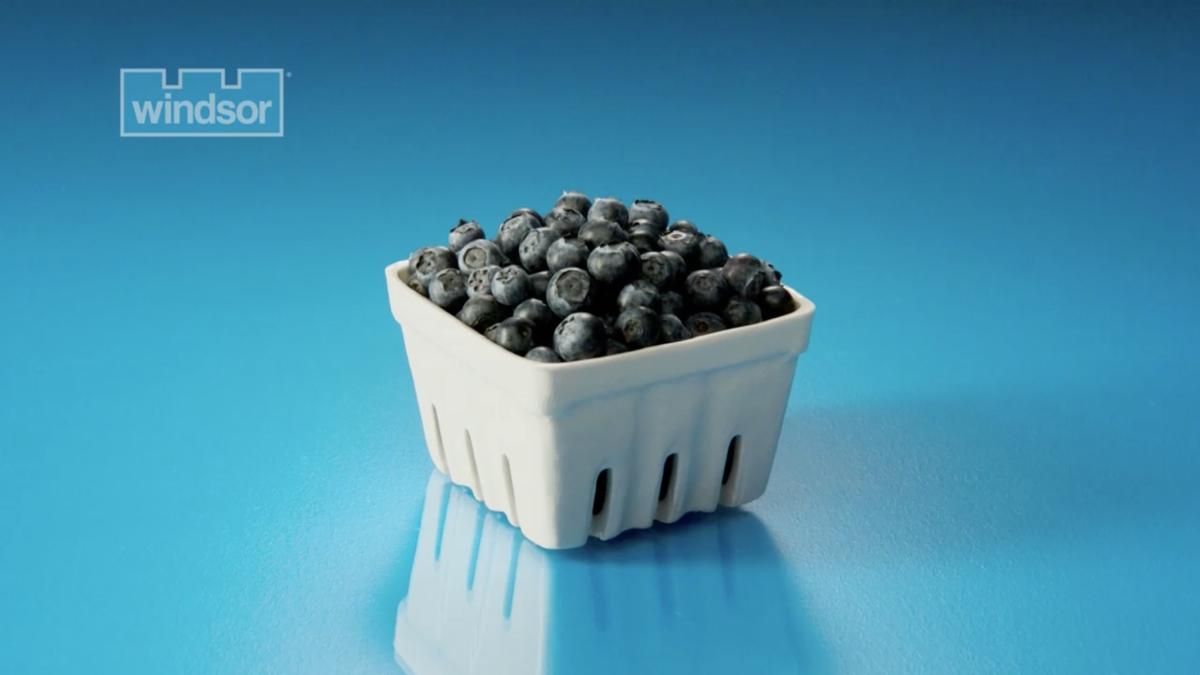 Windsor Salt: Instant Gourmet TV Campaign