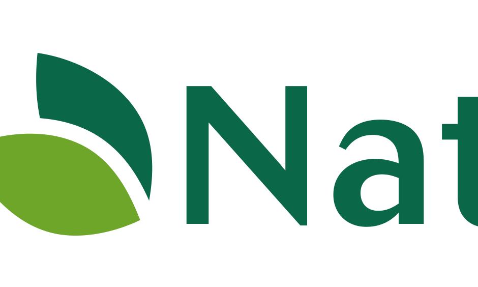 NaturaSense: Ideation & Logo Development